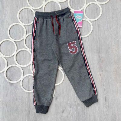 Спортивные брюки Linger 5 Лампас Серый
