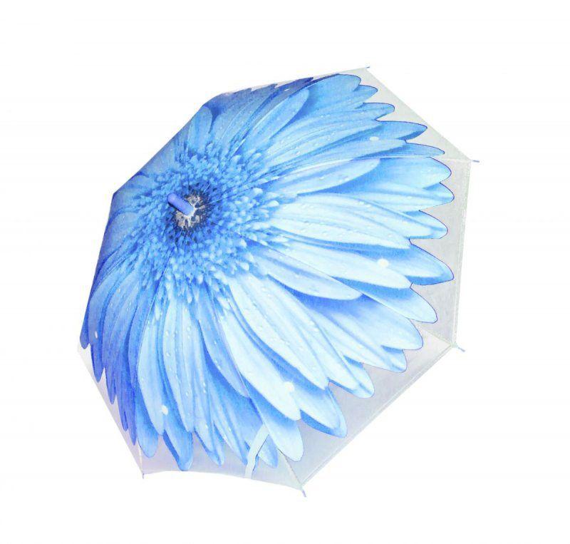 Зонтик цветок