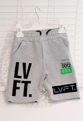 Шорты LVFT Серый