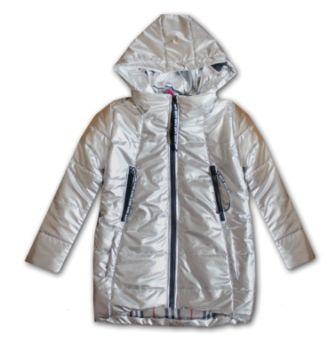Куртка серебро Серебро