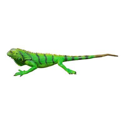 Игуана зеленая 51 cm