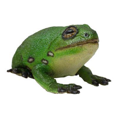 Лягушка зеленая древесная 22 cm