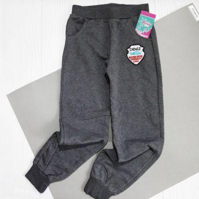 Спортивные брюки Герб, начес Серый